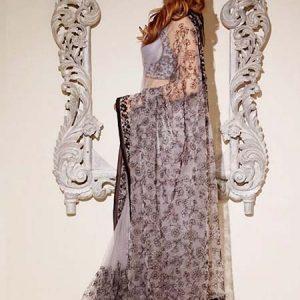 Grey Nylon Net Fabric Machine Work Dori & Hand Work Bollywood Designer Saree