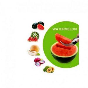Watermelon Slicer and Server