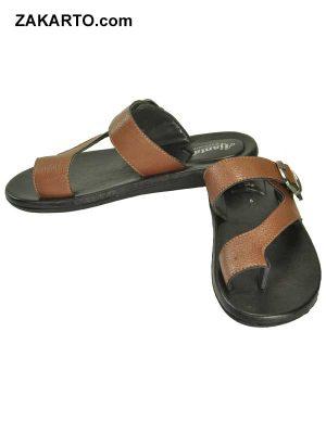 Ajanta Men's Classy Sandal Slipper - Black & Brown