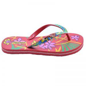 Women's Multicolour Colour EVA Flip Flops