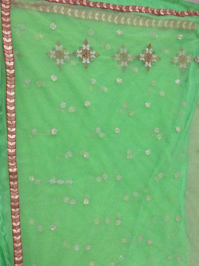 Nylon Net Green Colour Sequence & Multi Work Bollywood Sarees